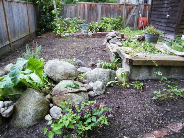 Weeds pulled and ready for its transformation.