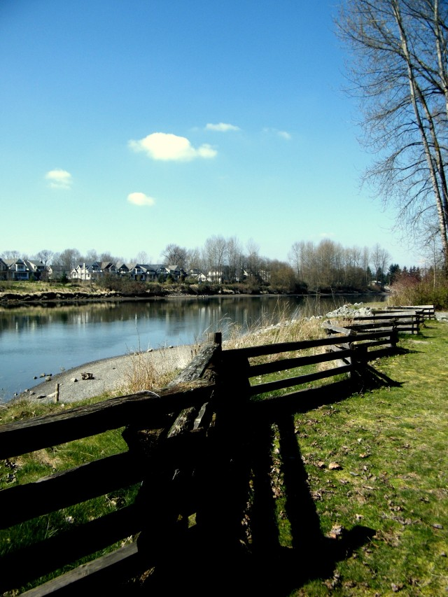 The view from Brae Island Park in Fort Langley