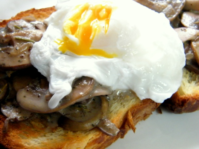 Creamy mushrooms and egg on brioche.