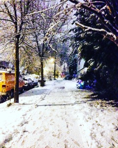 "Vancouver's ""Snowpocalype"" was pretty at times."