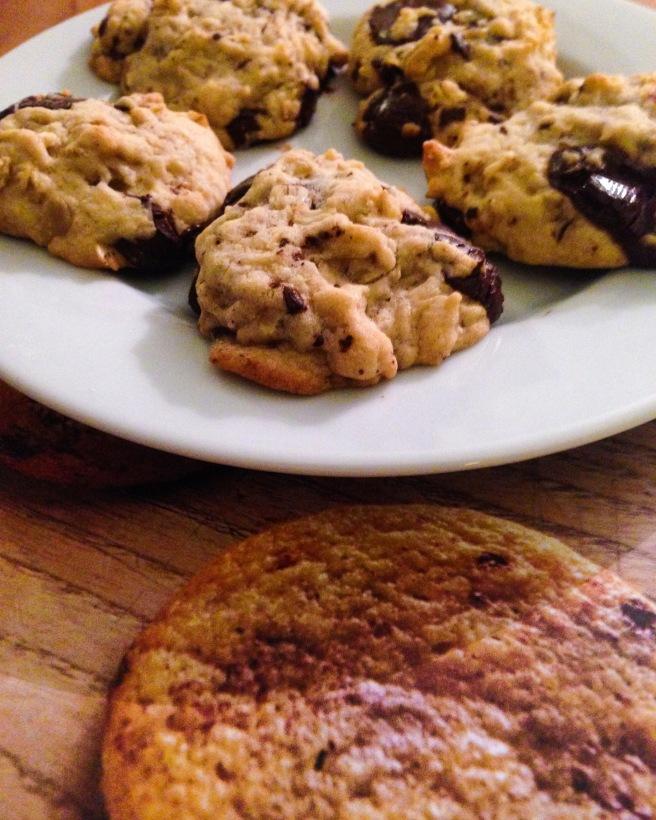 Ten Minute Chocolate Chip Cookies
